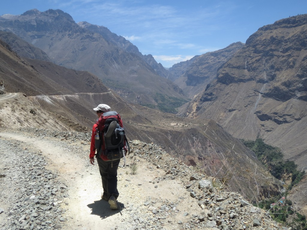 Arequipa and Colca Canyon - Sass in the Wild